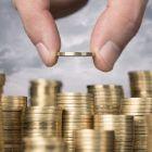 auditor-economica